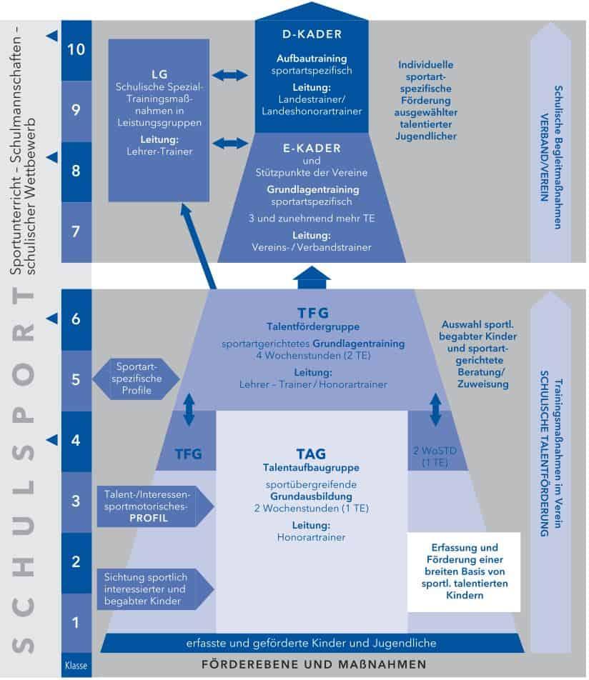 organisationsstruktur landesprogramm 20170313 1619011833